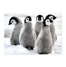 Penguin Party 30-Piece Cardboard Jigsaw Puzzle