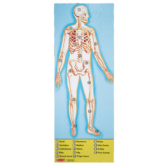 100 Piece Double Sided Floor Puzzle Human Anatomy Melissa Doug